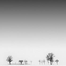 blank by MatthiasHaltenhof